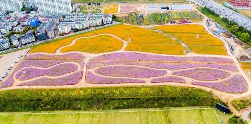 개장 1년만에 15만명 찾은 인천 꽃밭…아파트 개발 막아라