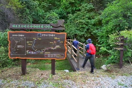 [걷고 싶은 길] 금강산 지맥 끝자락, 파로호 수변길