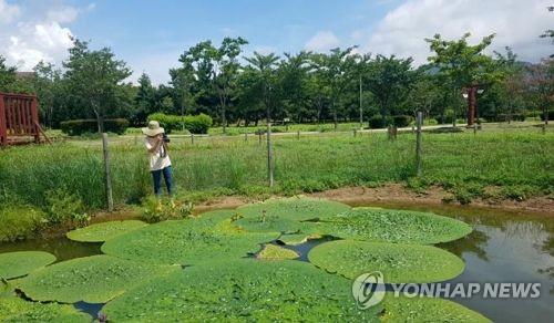 낙동강생태공원 사계절 풍경 담은 영상 공모전