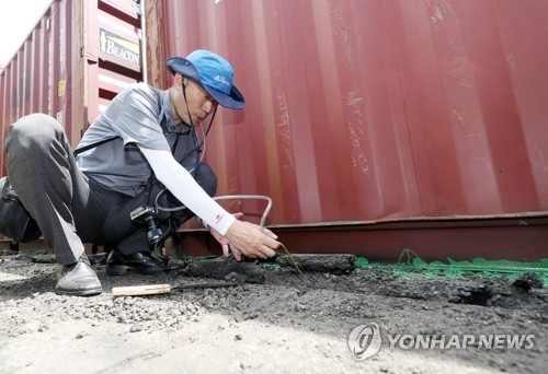 A South Korean quarantine official inspects ground near a container to find tropical red fire ants at Incheon Port in Incheon on July 7, 2018. (Yonhap)