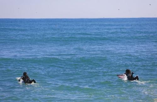 부흥해수욕장에서 여성 서퍼들이 바다로 뛰어들고 있다. [사진/성연재 기자]