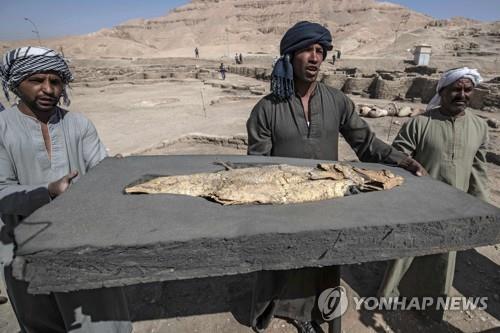 이집트 룩소르 고대 도시유적에서 나온 화석화한 물고기