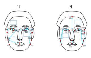 성별 고혈압 환자의 안면 특징 변수