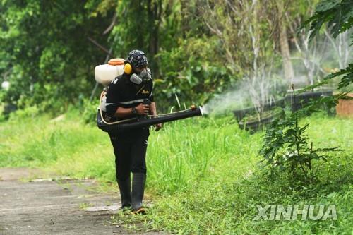 뎅기열 모기 예방 위한 싱가포르 방역 활동