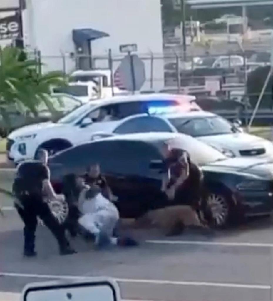 경찰견이 흑인을 물도록 한 백인 경찰관들 [트위터 영상 캡처.재판매 및 DB금지]