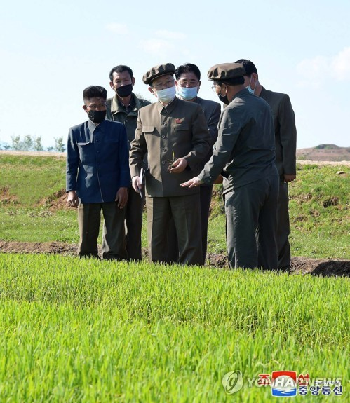 N. Korean premier inspects agricultural field